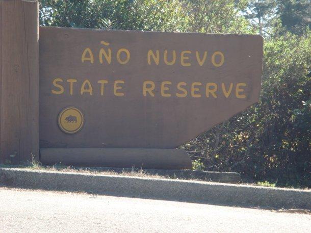 ano-nuevo-state-reserve