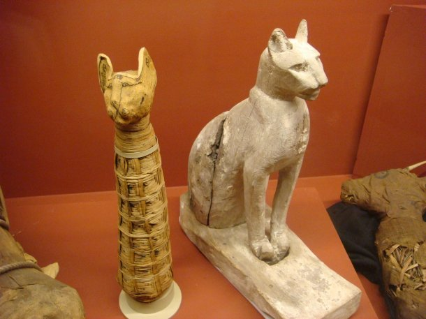 Rosicrucian-Museum-mummified-cats