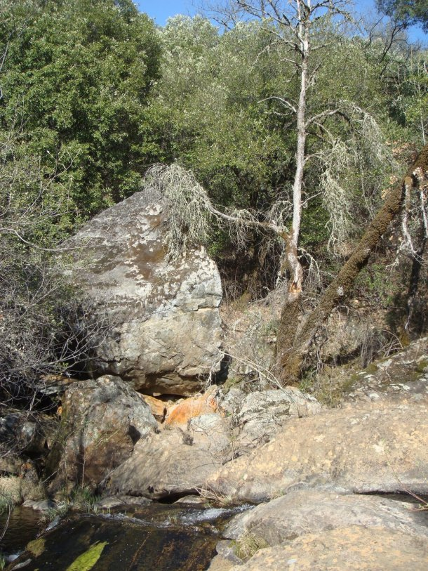 dry-creek-watershed-yuba-county
