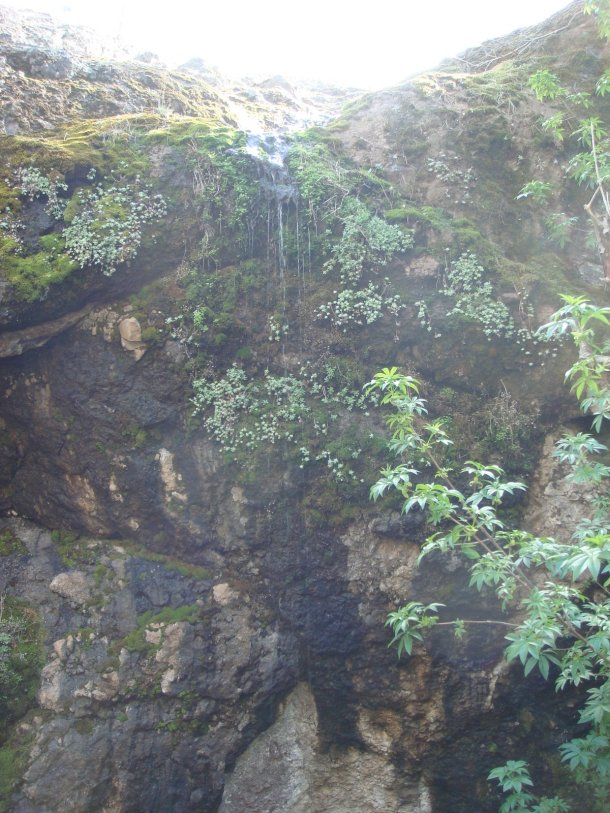pinnacles-national-park