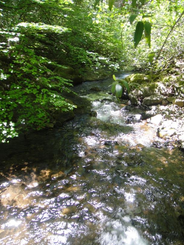 frey creek