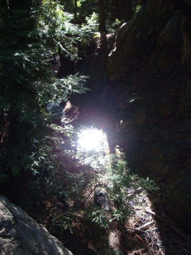 Pfeiffer-Falls