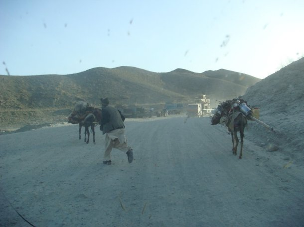 man-with-donkeys-afghanistan
