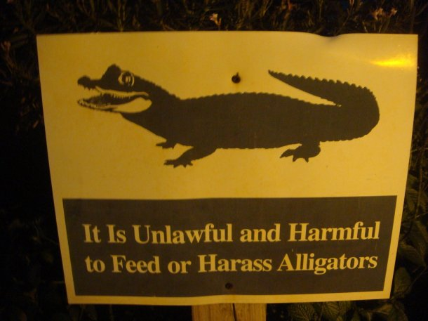 alligator-sign