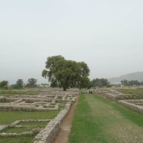 Visiting Dharmarajika and Sirkap Taxila