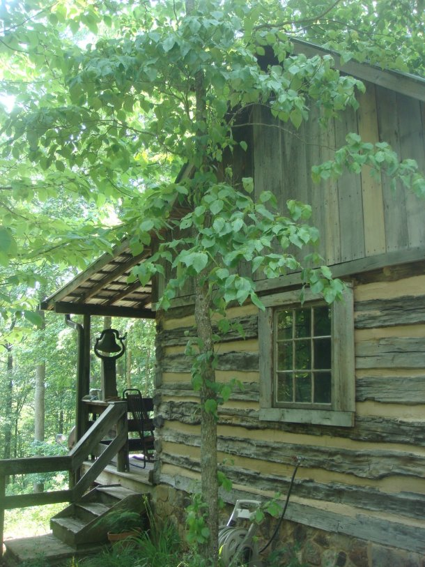 cabin-in-southern-woods