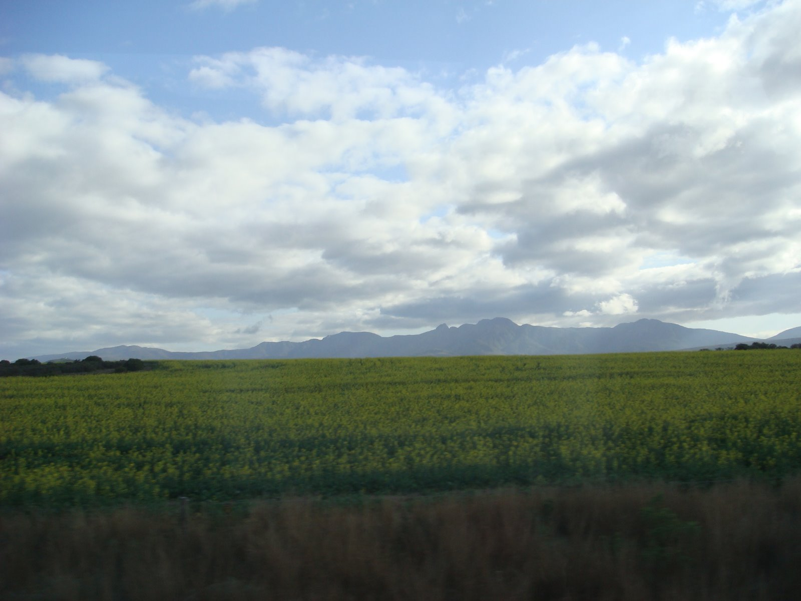 Wild landscapes of south africa the velvet rocket for Landscape sa