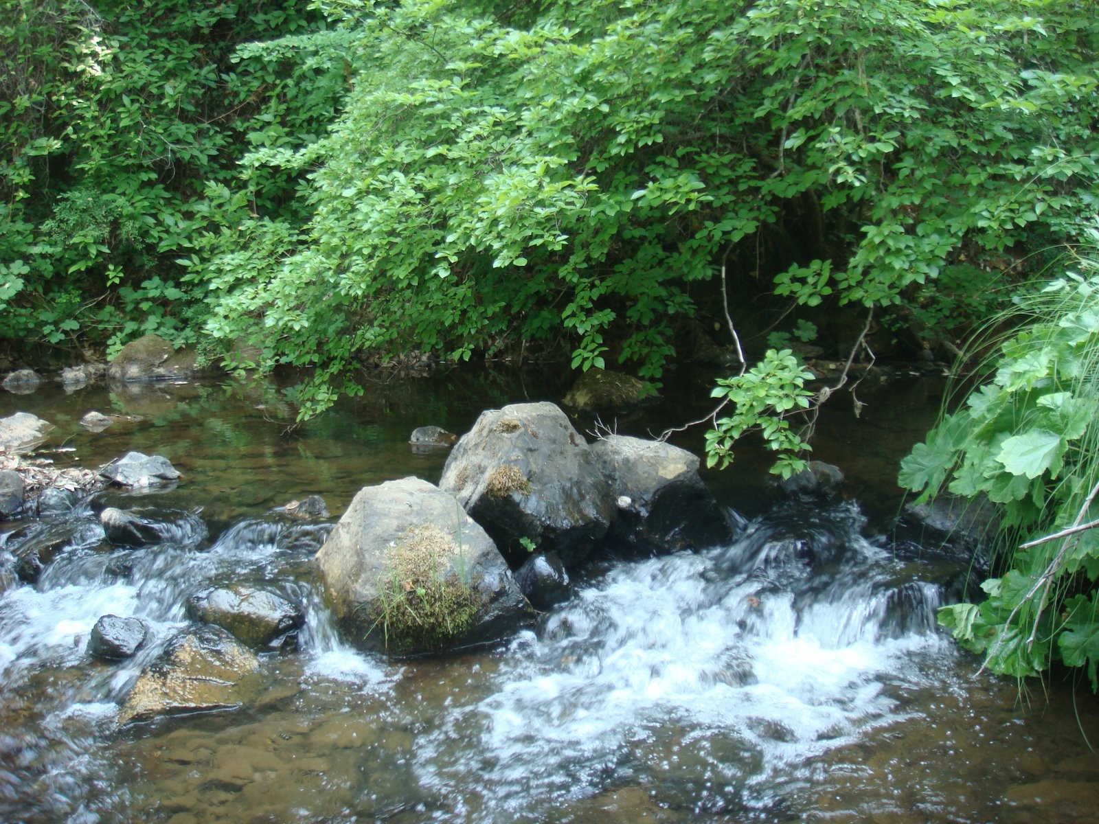 Overcoming dry creek part 2 the velvet rocket for Waterfall environment