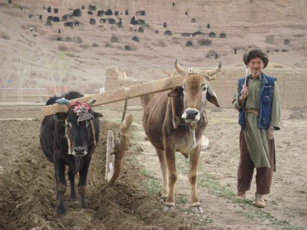 hazara-farmer-bamiyan