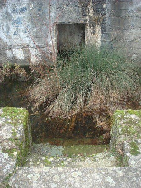 adolf hitler great war bunker