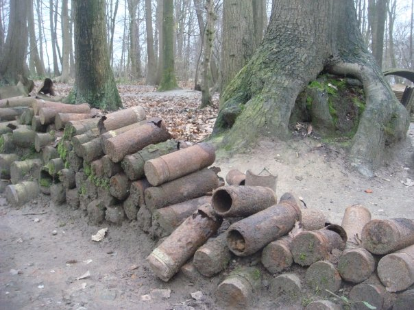 sanctuary-wood