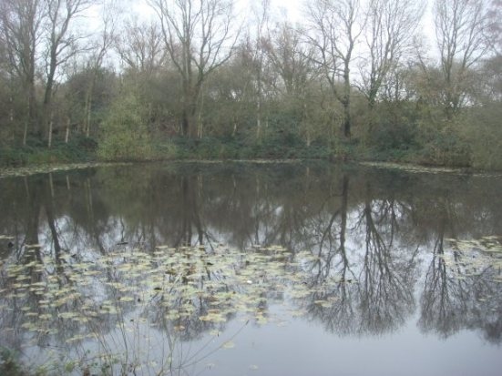 Spanbroekm-Pool-of-Peace