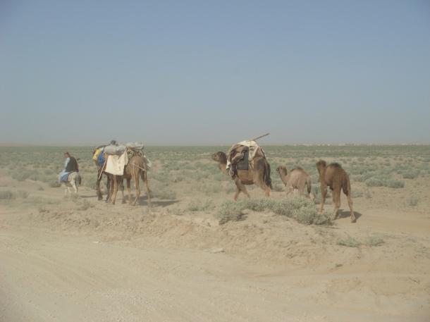 bedouin-afghanistan