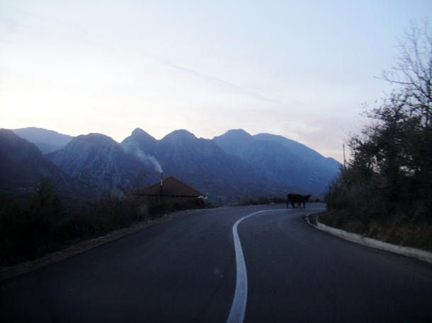 dangerous-road-albania