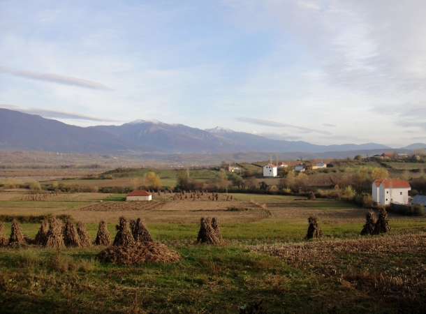 farms-albania