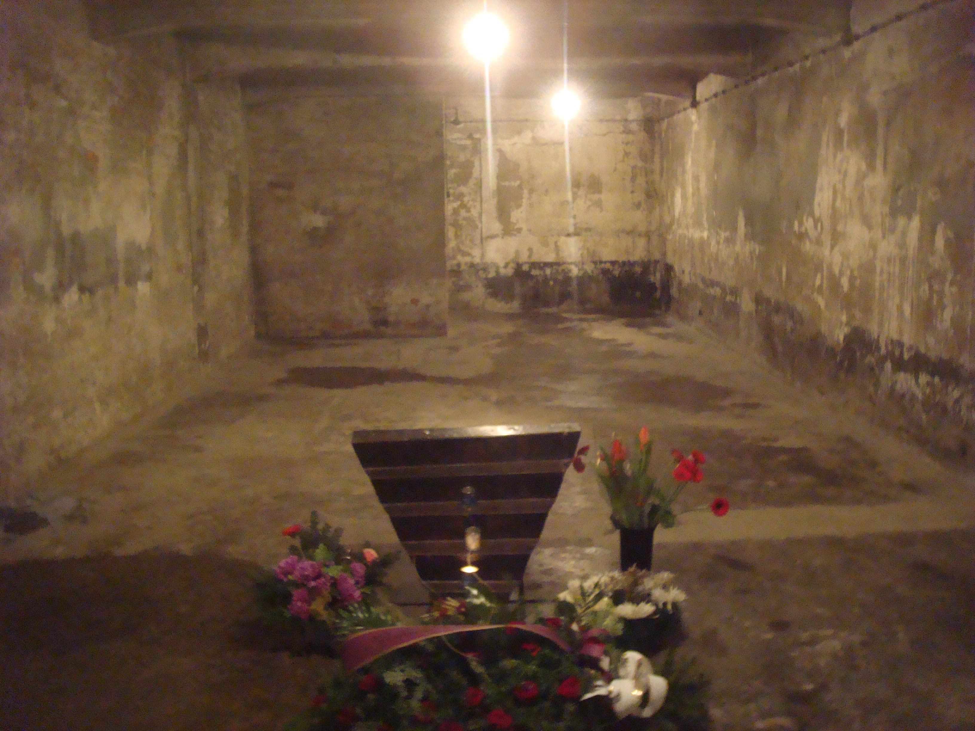 Kl Auschwitz And Auschwitz Ii Birkenau The Velvet Rocket
