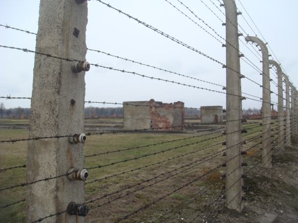 Fence around Birkenau