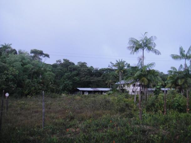 outskirts of Cayenne