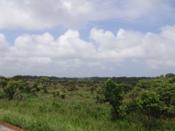 French Guiana countryside