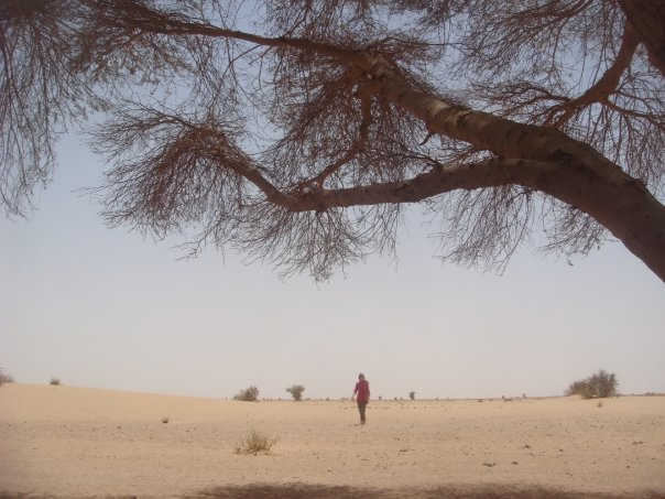 Nomadic life in the Bayuda desert of Sudan