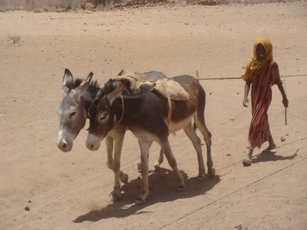 desert-well-used-by-nomads-sudan
