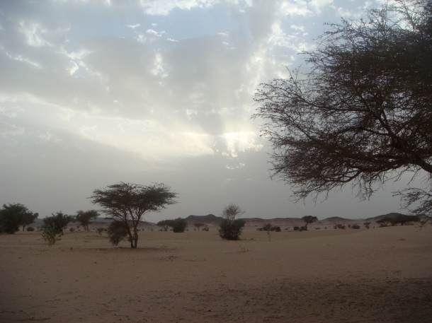 sudan-wilderness