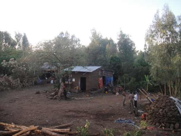 home at Bahir Dar cattle market