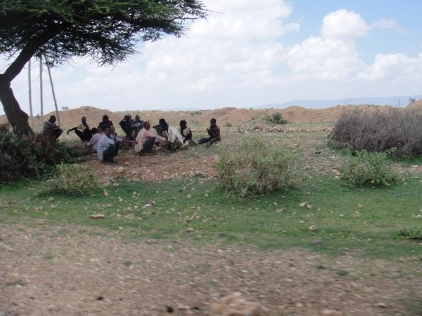 men huddled under a tree in jijiga