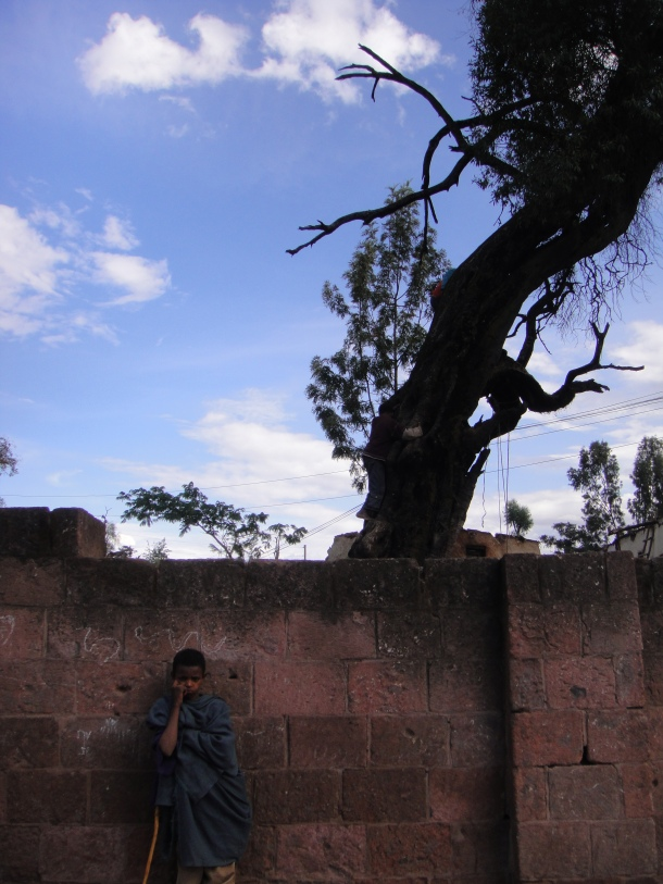 kid posing under tree in Lalibela