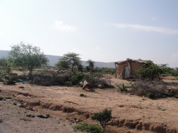 Crude homes in rural Somalia