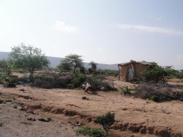 Crude homes in rural Somalia