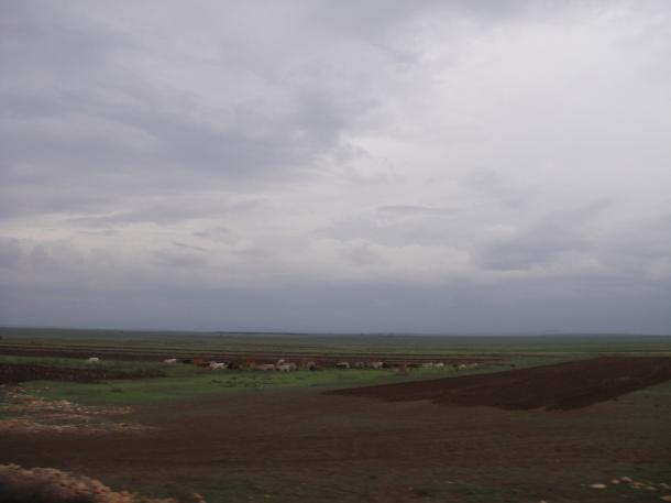 Fields surrounding Jijiga