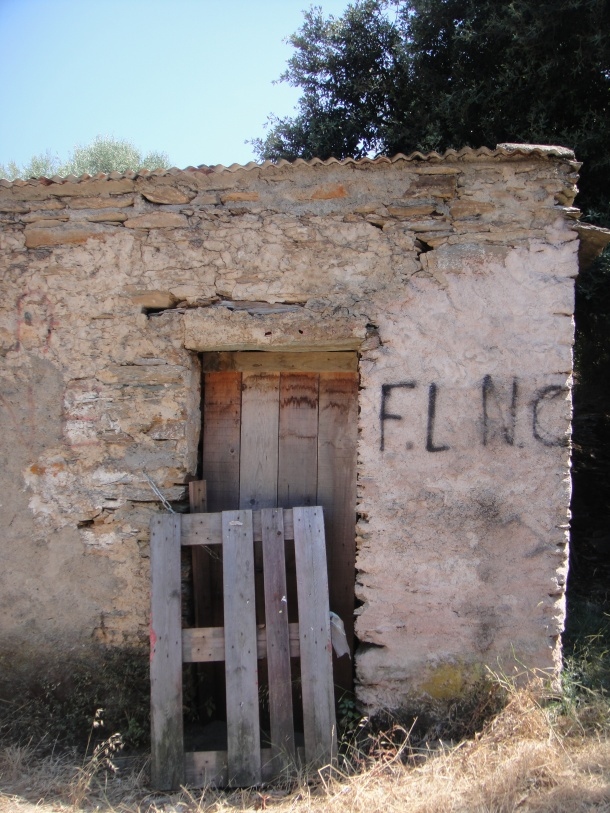 ersa corsica flnc
