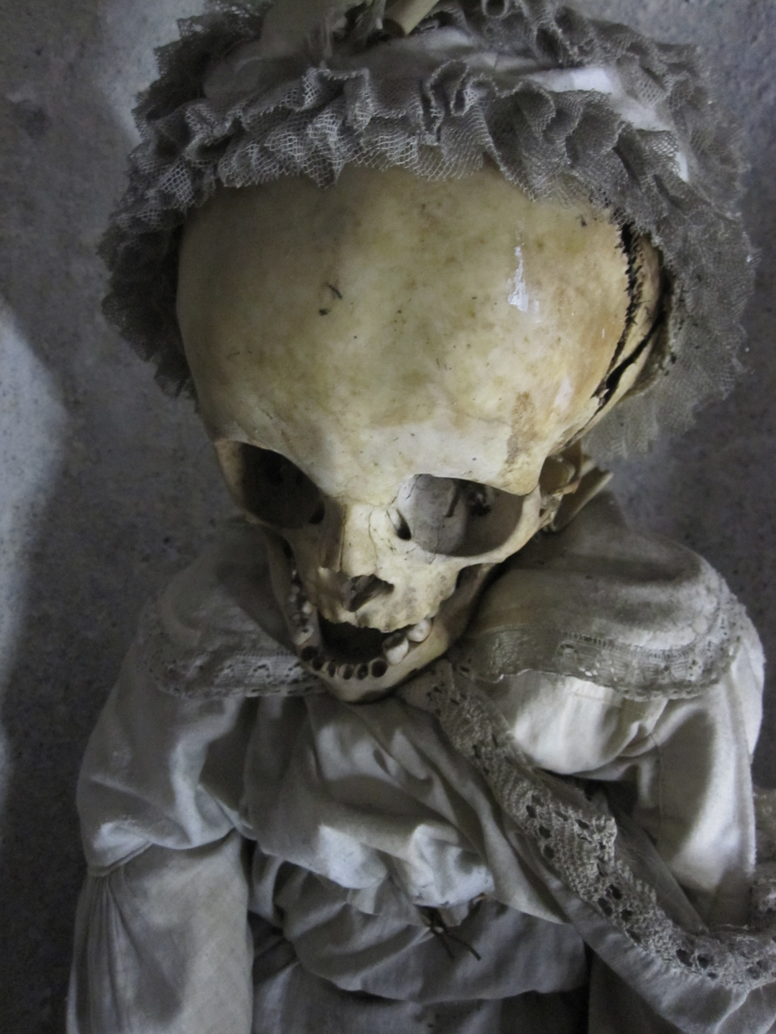 the capuchin catacombs of palermo Discover the gruesome burial chambers of the capuchin catacombs of palermo, filled with the mummified bodies of friars and local luminaries on a private tour.