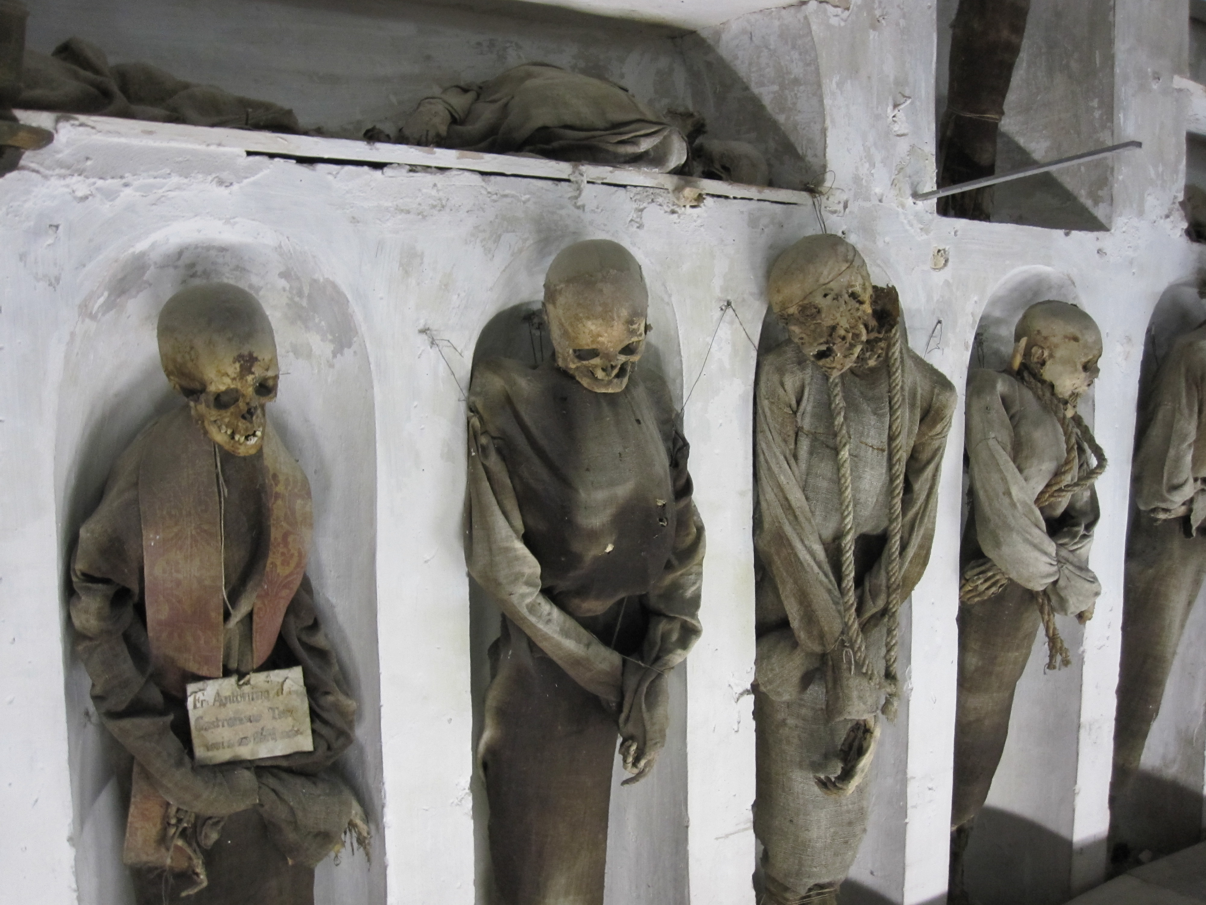 the capuchin catacombs of palermo The capuchin crypt is a small space comprising several tiny chapels located beneath the church of santa maria della concezione dei cappuccini on the via veneto near piazza barberini in rome, italy it contains the skeletal remains of 3,700 bodies believed to be capuchin friars buried by their order .