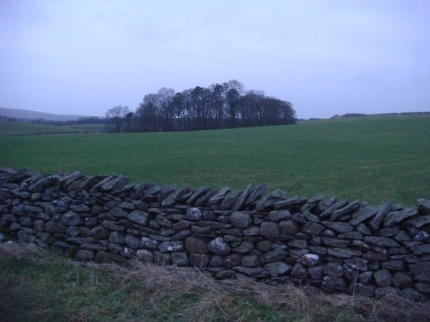 Yorkshire Rock Wall
