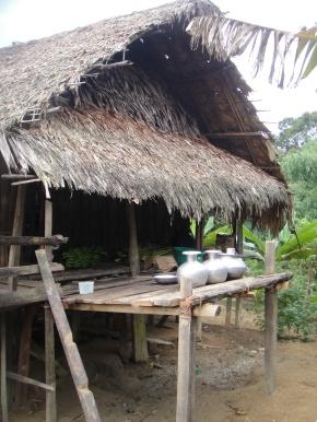 Durpai – An Adi Galo Village In ArunachalPradesh