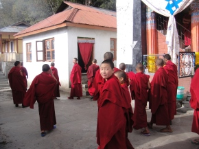 A Nunnery In Tawang: Brahma Dung Chung Ani Gompa (also known as ThukjeChueling)