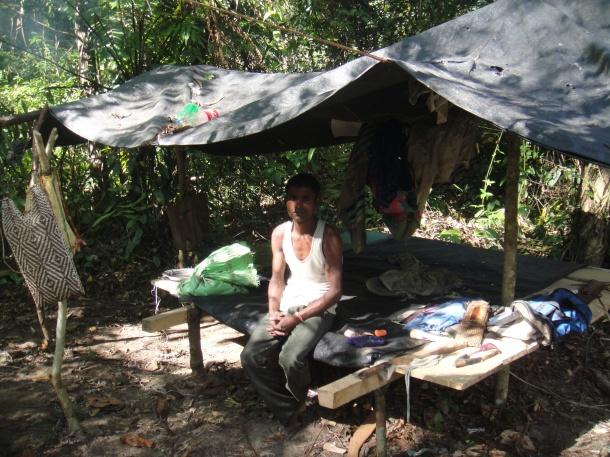 logging arunachal pradesh