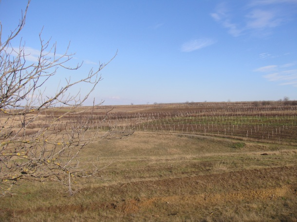 countryside moldova