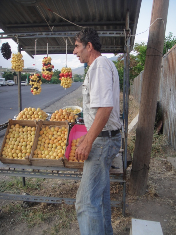 armenia apricots