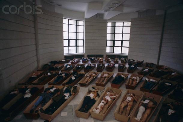 killed 1989 romanian revolution