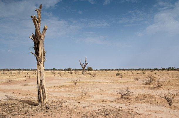 The landscape of Séguénéga in Burkina Faso, a commune in the north of the west African country, is suffering considerable environmental damage because of the increase in gold mining