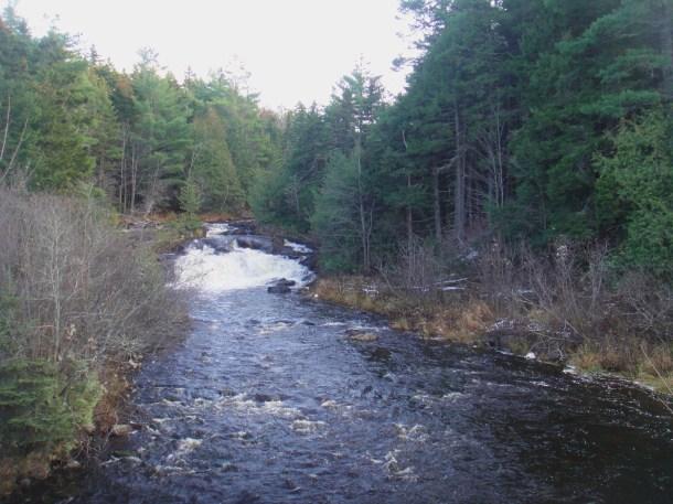 creek golden road