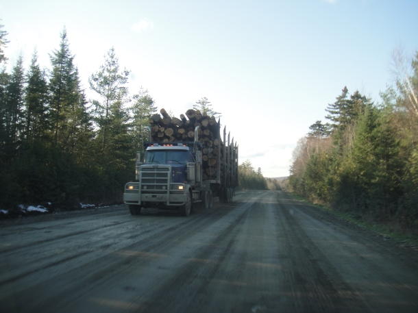 logging golden road
