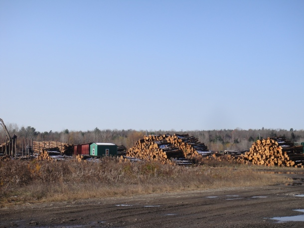 maine logging yard