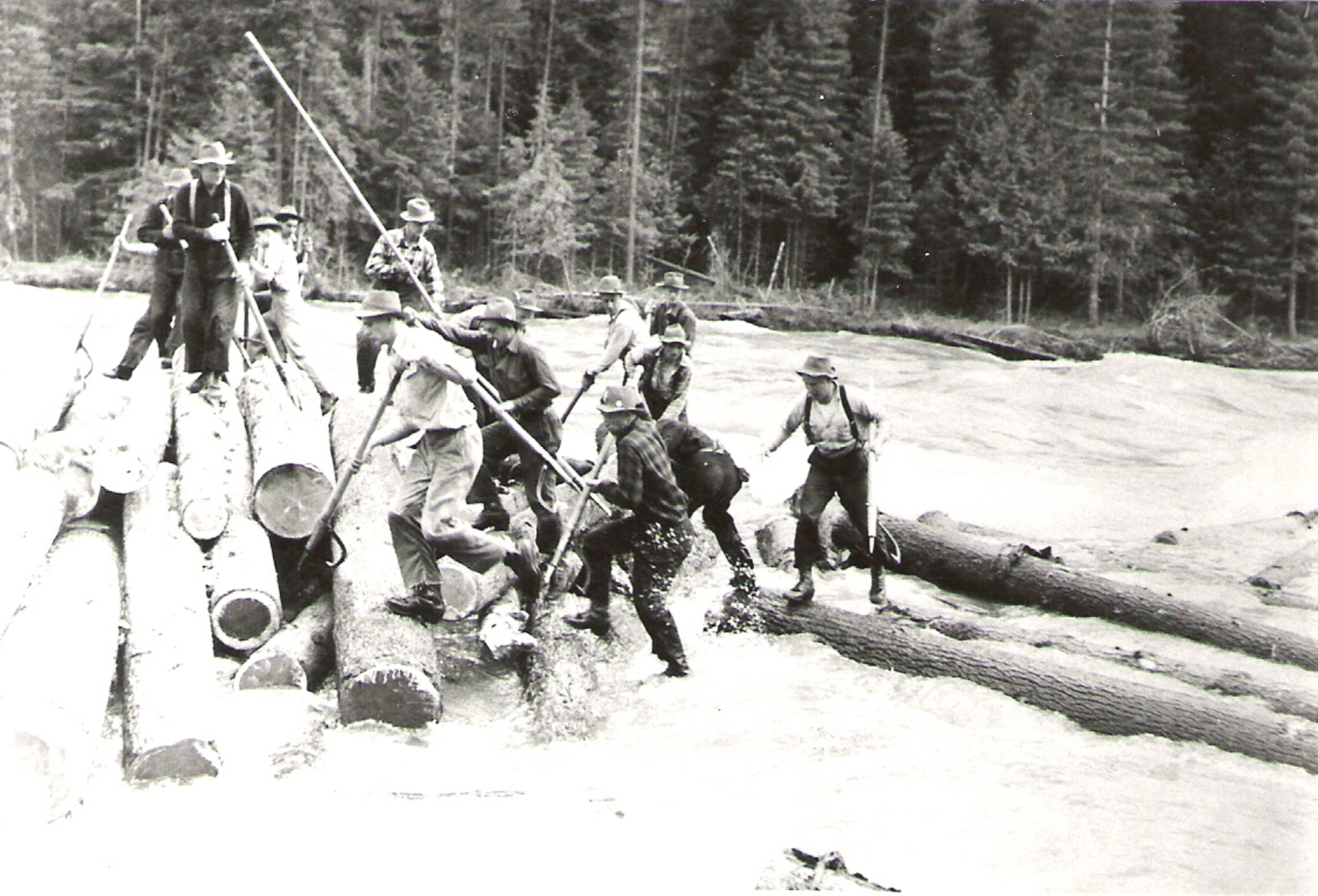logging runs