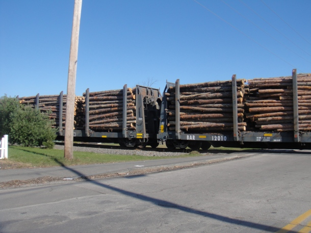 train with logs
