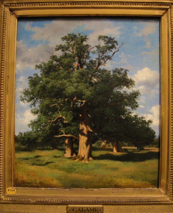 alexandre calame oak trees