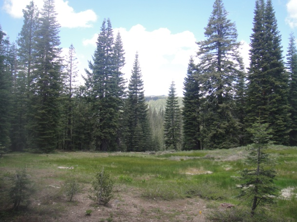 howland flat california